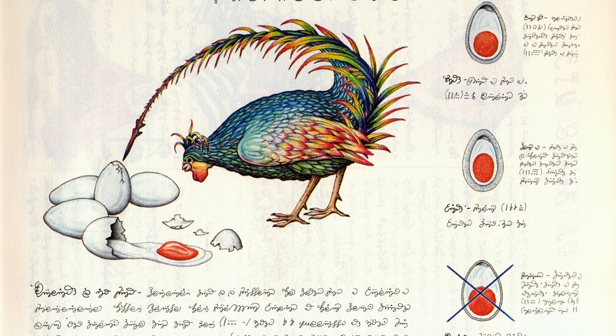 Image result for còdex Seraphinianus