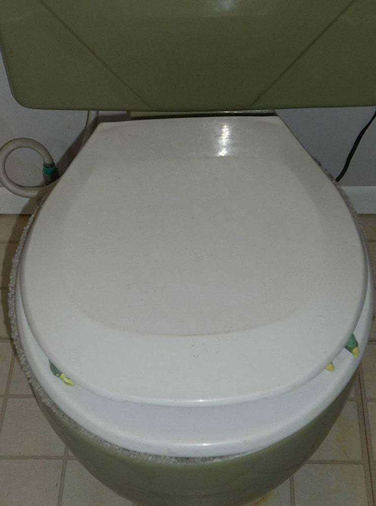 Fabulous Prank Toilet Goblin Dudeiwantthat Com Beatyapartments Chair Design Images Beatyapartmentscom