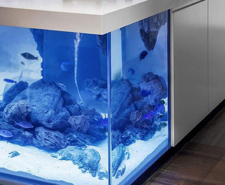 Kitchen Island Fish Tank ocean kitchen - aquarium island | dudeiwantthat
