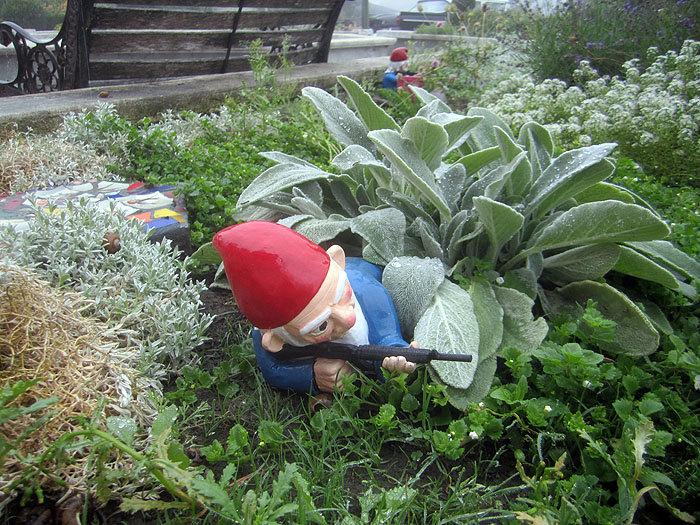 ... Combat Garden Gnome