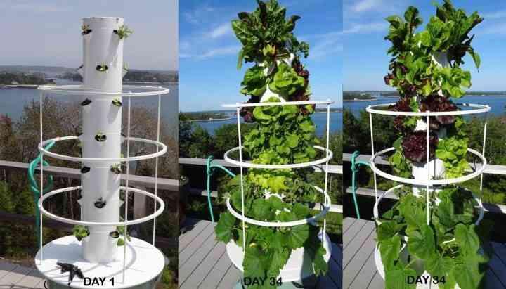 Tower Garden Growing System DudeIWantThatcom