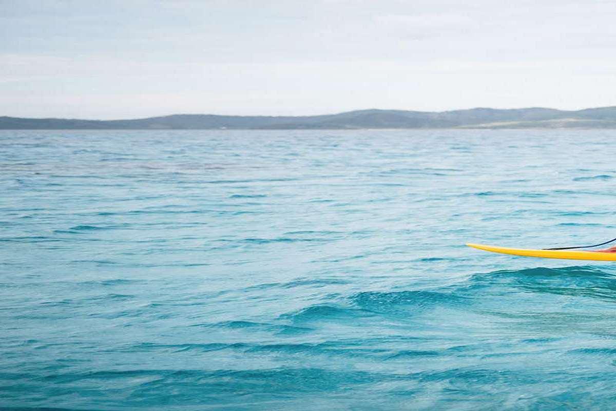 Jetfoiler Hydrofoil Electric Surfboard | DudeIWantThat com