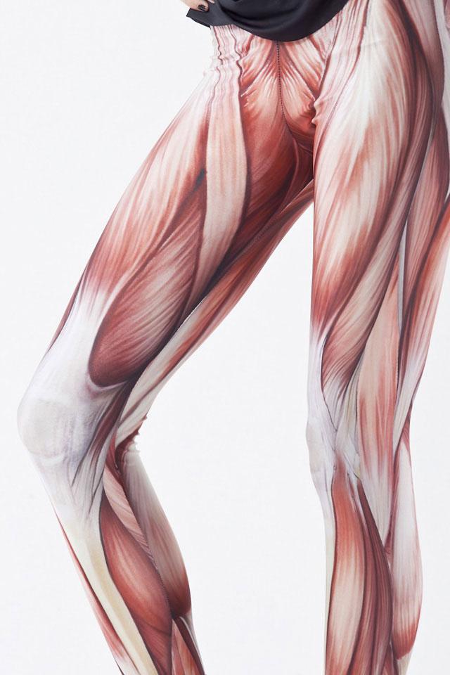 Anatomical Leggings | DudeIWantThat.com