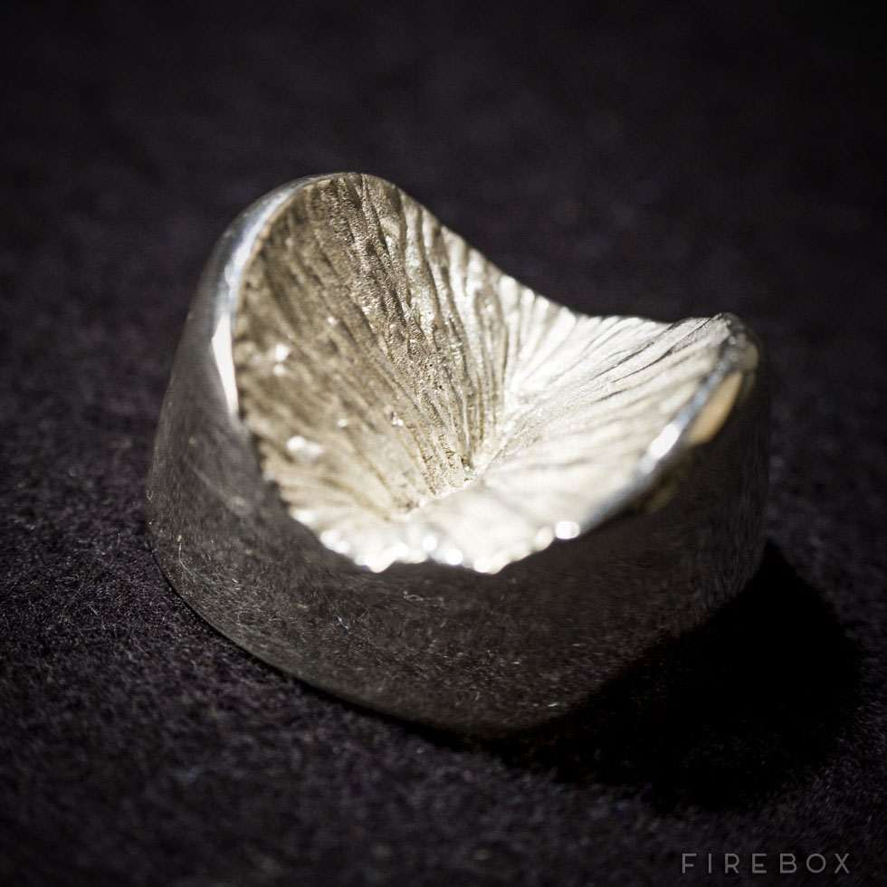 Solid Silver Anus | DudeIWantThat.com