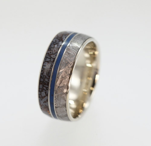 Handmade Meteorite Dinosaur Bone And Titanium Ring