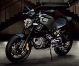 Ducati Diesel Clutch Jacket