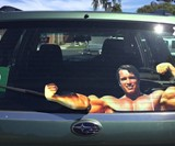 Flexing Arnold Read Window Wiper Decal