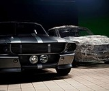 Wire Mustang