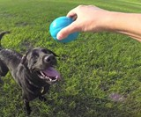 Babble Ball