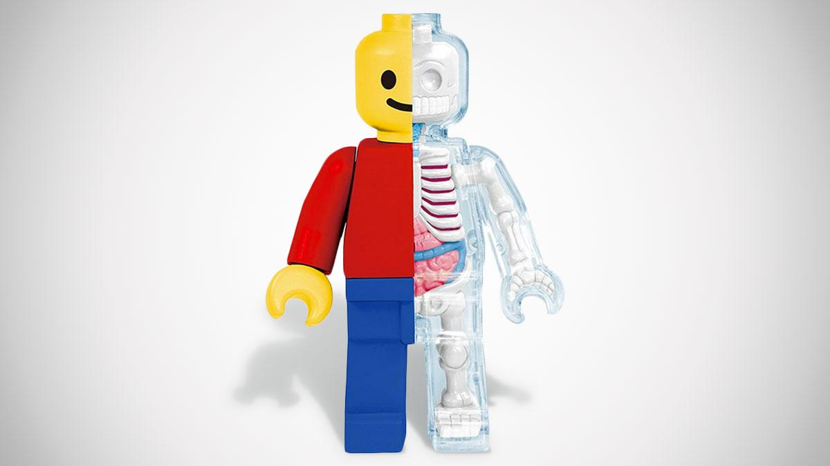 Anatomical Brick Man
