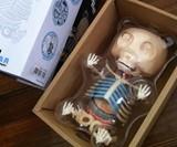 Anatomical Gummi Bear in Box