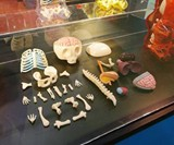 Anatomical Gummi Bear Parts