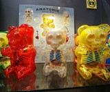 Anatomical Gummi Bears
