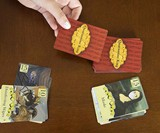 Quarantine King Card Game