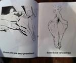 The Big Coloring Book of Vaginas