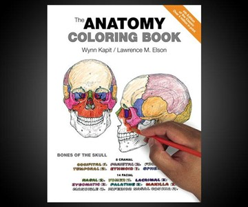 The Anatomy Coloring Book | DudeIWantThat.com