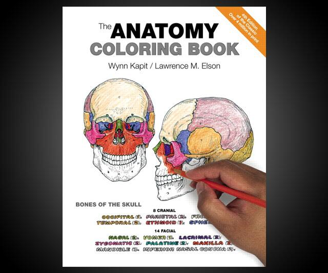 - The Anatomy Coloring Book DudeIWantThat.com