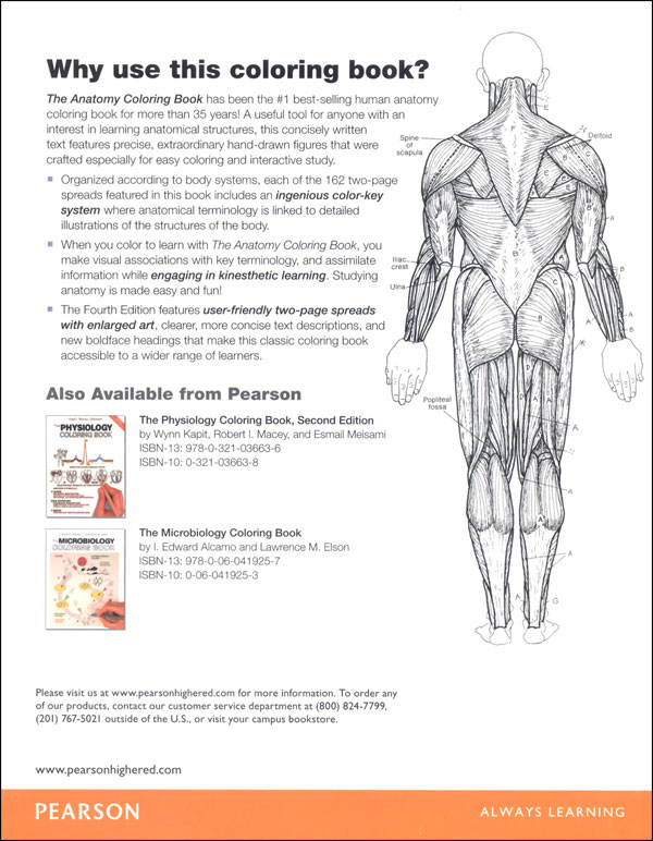 Download Free 4Th Anatomy Book Coloring Edition Physiology