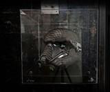 Python Skin Death Trooper Helmet