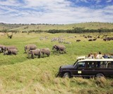 Abercrombie & Kent Private Jet Tour of Africa