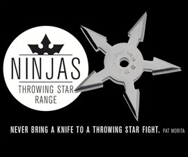 Indoor Ninja Throwing Star Range