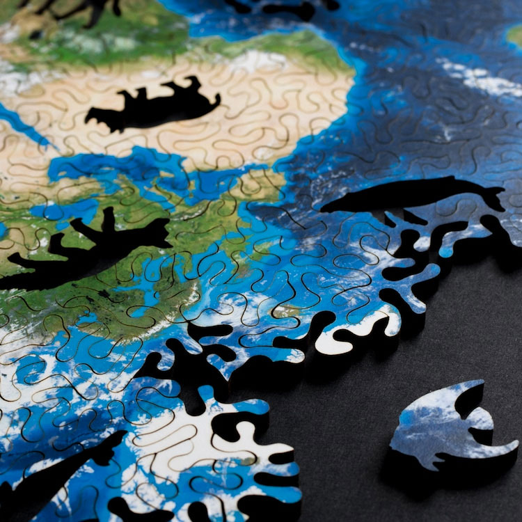 Icosahedral Projection Earth Puzzle Dudeiwantthat Com