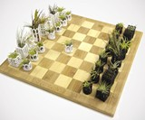 Air Plant Living Chess Set