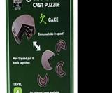 CAKE Hanayama Cast Metal Puzzle