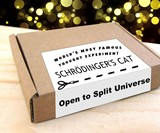 Schrodinger's Cat in a Box Thought Experiment
