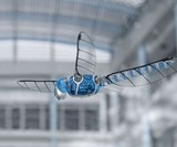 BionicOpter Advanced RC Dragonfly