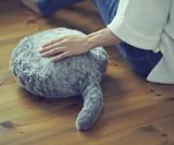 Qoobo Therapeutic Robot Pillow
