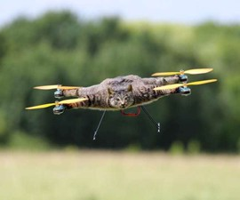 Taxidermy Animal Drones