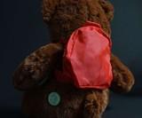 BooBuddy Interactive Ghost Hunting Bear