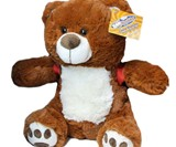 BooBuddy Interactive Ghost Hunting Bear