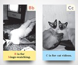 Escapist ABCs Alphabet Flashcards