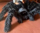 Giant Stuffed Tarantula