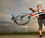 Bird of Prey Bicycle