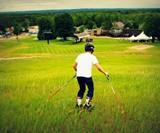 Grasski Grass Skis