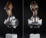 Mass Effect Salarian Statue - Front & 3/4 Views
