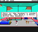 Leisure Suite Larry: Hooker