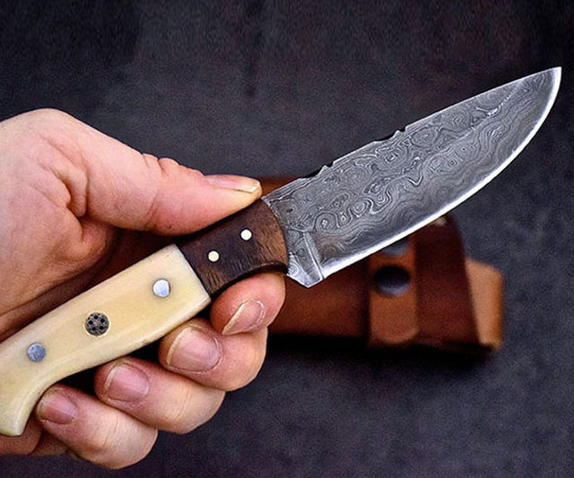 Benchmade Kitchen Knives Review