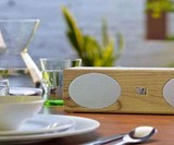Soundfreq Double Spot Speaker