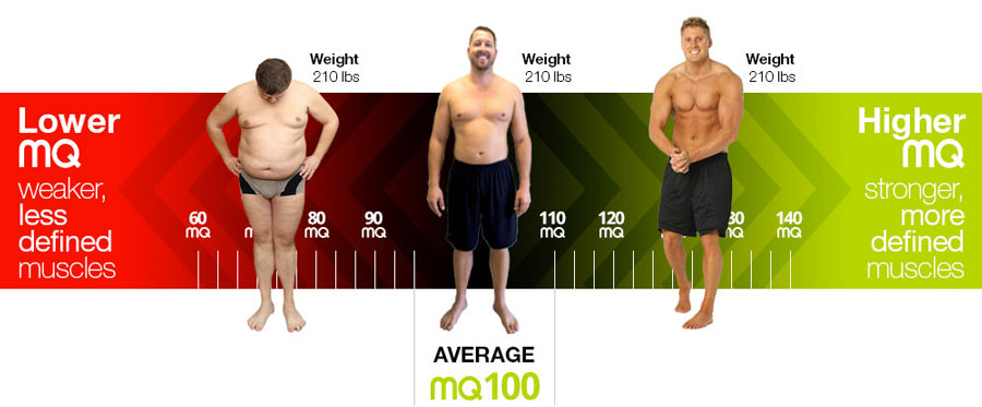 Aim - Body Composition & Muscle Analyzer | DudeIWantThat.com