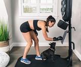 Liteboxer Boxing Fitness Machine