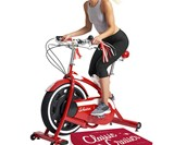 Schwinn Classic Cruiser Indoor Bicycle