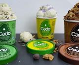 Cado Avocado Ice Cream