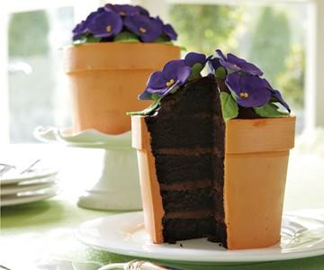 Blooming Flower Pot Cake