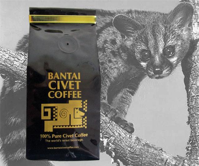 Civet Cat Food