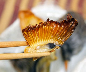 Dried Japanese Blowfish Fins