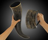 Game of Thrones Drinking Horns